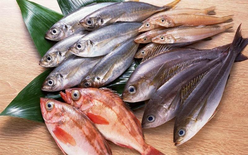 Những loại cá chứa nhiều thủy ngân