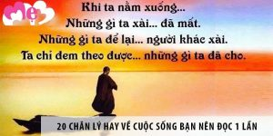 953-nhung-chan-ly-ve-cuoc-song-muon-truong-thanh-ban-can-biet 1