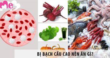 Người bị bạch cầu cao nên ăn gì để giảm bạch cầu trong máu?