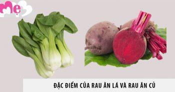 Đặc điểm của rau ăn lá và rau ăn củ