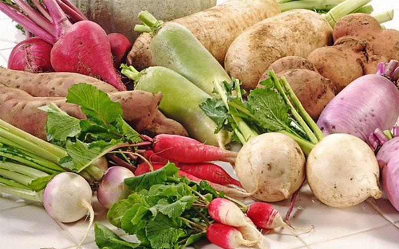 Một số loại rau ăn củ