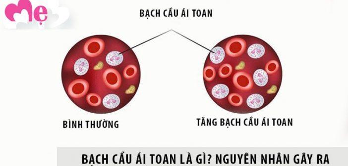 Nguyên nhân gây tình trạng tăng bạch cầu ái toan trong máu 1
