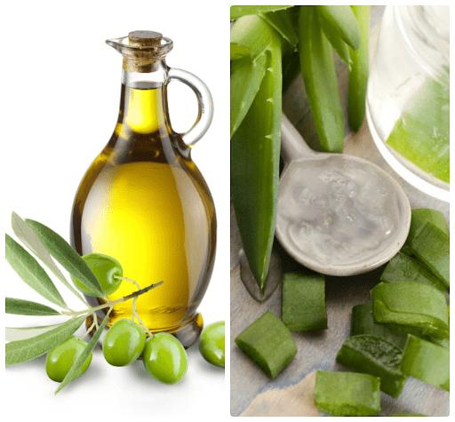 Dưỡng tóc với dầu oliu và nha đam
