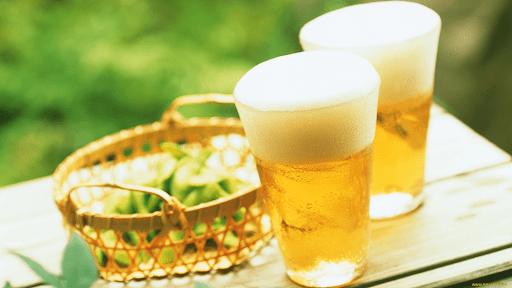 Phục hồi tóc hư tổn với bia