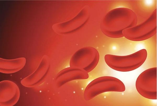 Bệnh hồng cầu hình lưỡi liềm ở người