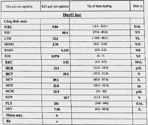 Các chỉ số trong kết quả xét nghiệm máu