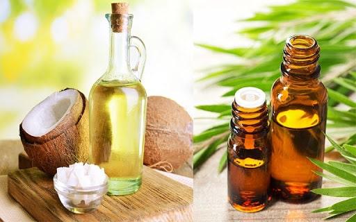 Làm mặt nạ dưỡng da từ dầu dừa và tinh dầu trà xanh